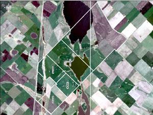 20060521110529-parcelas.jpg